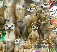 Meerkat.stall by pix-elation