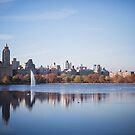 Central Park by Kameron Walsh