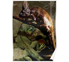 Lizards Poster