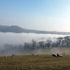 Thorpe Cloud by Paul  Green