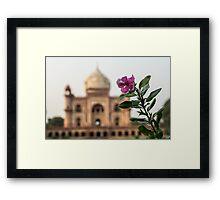 Mughal Flower Framed Print