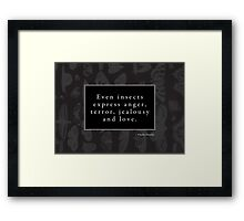 Emotional Insects Framed Print