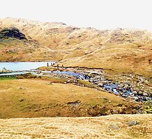 Stickle Tarn by GeorgeOne