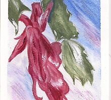 Christmas Cactus by Lynda Earley