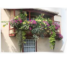 Balcony of Flowers Poster