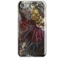 Rough Fileclam iPhone Case/Skin