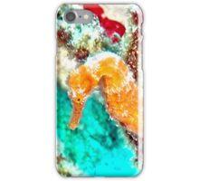 Orange Caribbean Sea Horse iPhone Case/Skin