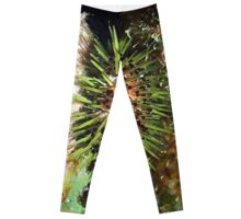 Jewell Sea Urchin Leggings