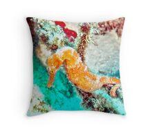 Orange Caribbean Sea Horse Throw Pillow