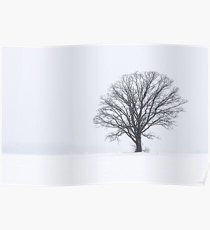 Snowy Tree Silhouette Landscape Poster