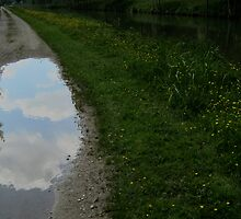 magic puddle by verena baumann