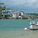 Across Salcombe estuary by StephenRB