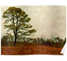 Solitary Pine Poster
