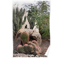 Cluster Cactus Poster