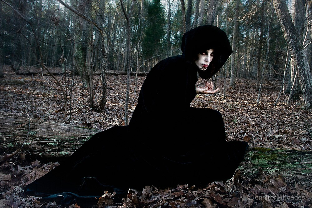 The Witch in the Woods by Jennifer Rhoades