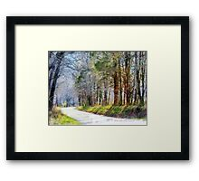 Country Road Through Forest Framed Print
