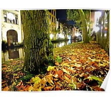 nightly leaves Poster
