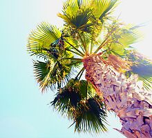palms of Spain by Loise  Elisabet