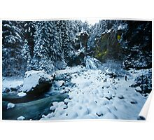 Winter scene snow in the forests and frozen creek of the Alps - color photo - Il Sangue dell'Inverno Poster