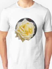 Yellow Rose T-Shirt