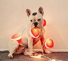French Bulldog Love by katieweychardt