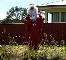 a Tassie Santa by Alenka Co