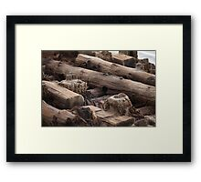 wooden foundation piles Framed Print