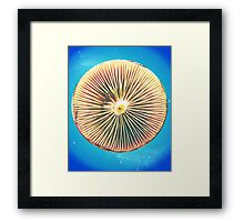Space Disc Framed Print