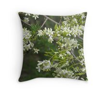 Busaria spinosa Throw Pillow