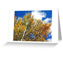 Blue Rocky Mountain Skies and Golden Aspen Trees in fall Greeting Card