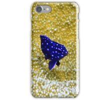 Juvenile Yellowtail Damselfish iPhone Case/Skin