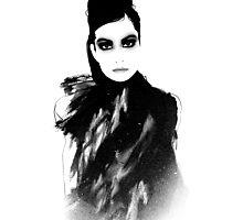 Venus in Furs Photographic Print