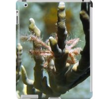 Neck Crab on Coral iPad Case/Skin