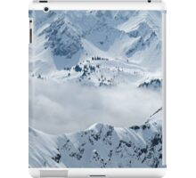 Alpine iPad Case/Skin