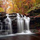 Subtle Fall Hues Around Wyandot Falls by Gene Walls