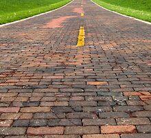"Auburn Brick Road, a.k.a. ""Brick 66"", Auburn, IL by swtrekker"