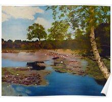 Hatchet Pond Poster