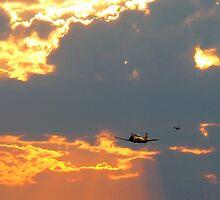 T-28 Trojan Trainer Fighter Plane by Amy McDaniel