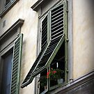 Shuttered window, Florence, Italy by buttonpresser
