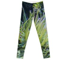Pink Tipped Giant Sea Anemone Leggings
