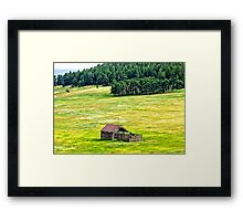 Natures Meadow Framed Print