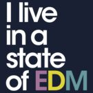 I Live in A State Of EDM  by DropBass