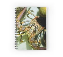 Caribbean Reef Lobster Close Up - Macro Head Photograph Spiral Notebook