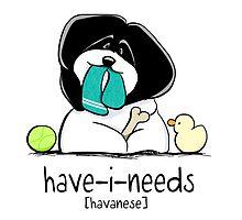 Have-i-Needs Havanese by offleashart