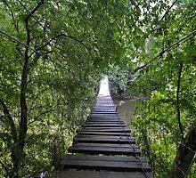 Old Wooden Bridge by Dawn Beck