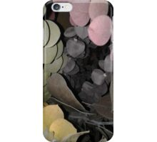 Inside a Rainbow of Leaves iPhone Case/Skin