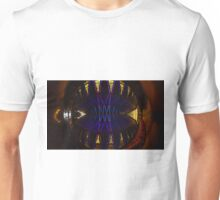 Ceiling of the United States Air Force Academy Chapel Unisex T-Shirt