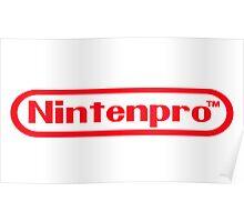 Nintenpro Video Gamer Poster