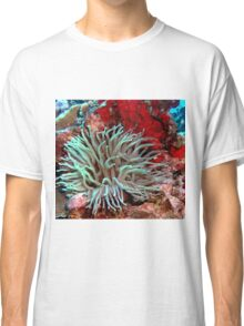 Giant Green Sea Anemone feeding near Red Coral Reef Wall Classic T-Shirt