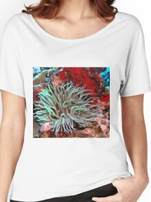 Giant Green Sea Anemone feeding near Red Coral Reef Wall Women's Relaxed Fit T-Shirt